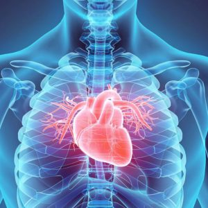 Electrophysiology study and catheter ablation