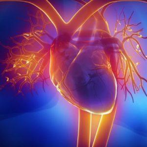 تركيب شبكة قلبية